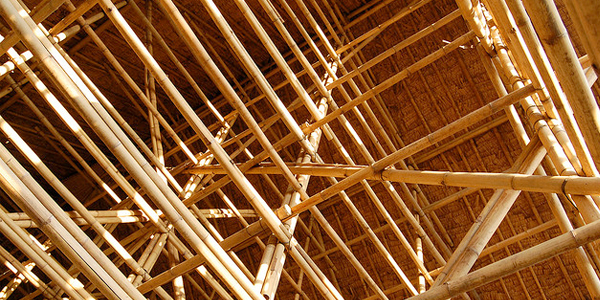 8a bamboo Cooperation: Another Reason For A Bamboo Ceiling?